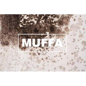 Antimuffa / Sanitizzanti